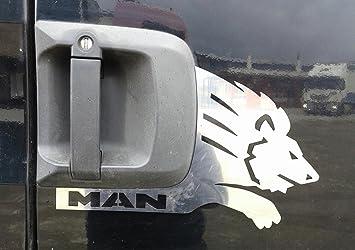 2 x Panel de la puerta de acero inoxidable pulido León decoración para Man TGA TGX camiones: Amazon.es: Coche y moto