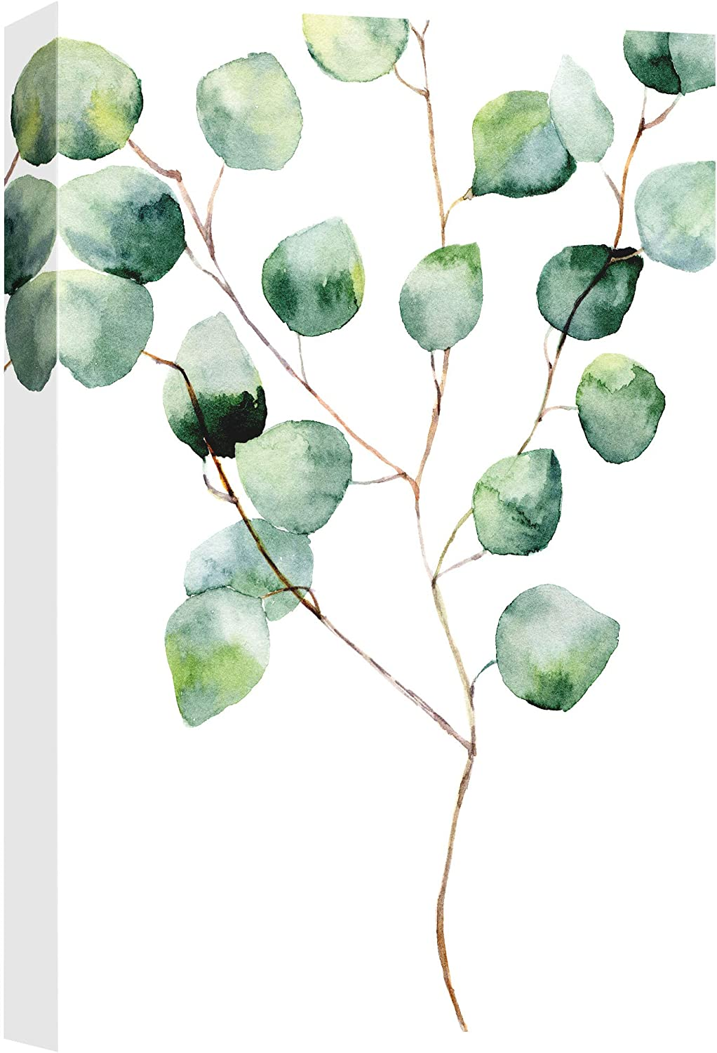B2T NWT Canvas Wall Art Silver Dollar Eucalyptus Watercolor Floral Painting Artwork for Home Prints Framed - 24x36 inches