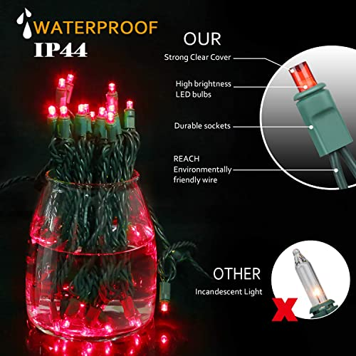 AIDDOMM LED Christmas Lights 50 Counts, for Outdoor and Indoor, Commercial Grade, Red Light, Green Wire, 25ft, UL Listed