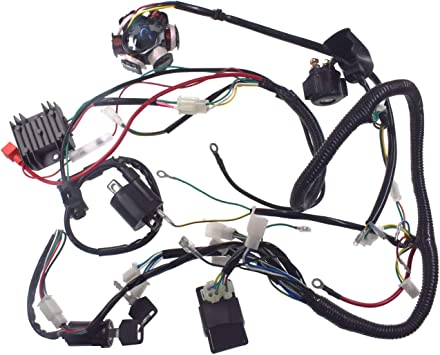 Amazon.com: Supermotorparts 150CC GY6 Wiring Harness Wire Loom Stator CDI  Switch Electrics Assembly for 4-Stroke Engine 150CC 125CC Go Kart ATV  Scooter Buggy: Automotive Amazon.com