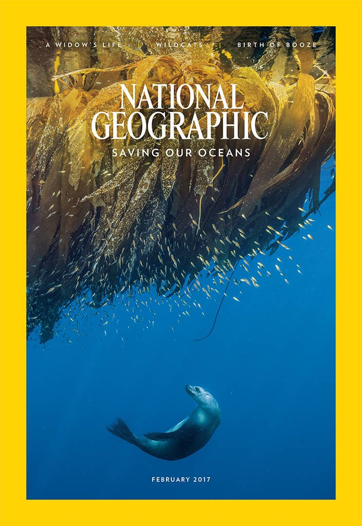 Save 74% off National Geograph...