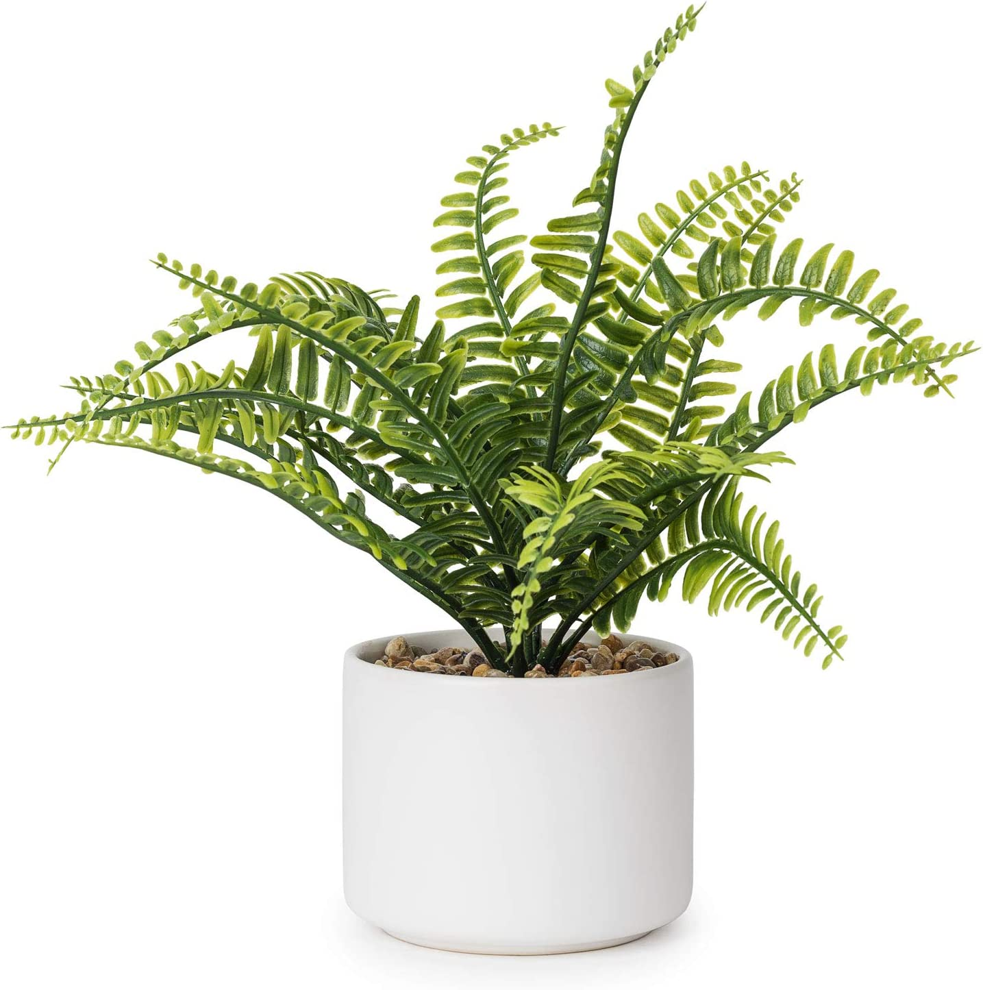 Lvydec Artificial Succulent Plants - Fake Fern Plant with a Ceramic Pot for Home Bath Office Shelf Decoration (Boston Fern)