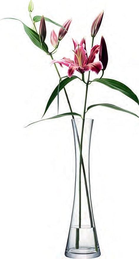 Amazon Com Lsa International 50 Cm Flower Tall Single Stem Vase Clear Kitchen Dining