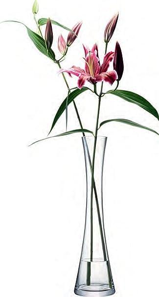 Amazon Lsa Flower Vase Tall Single Stem Tall Vase Kitchen Dining