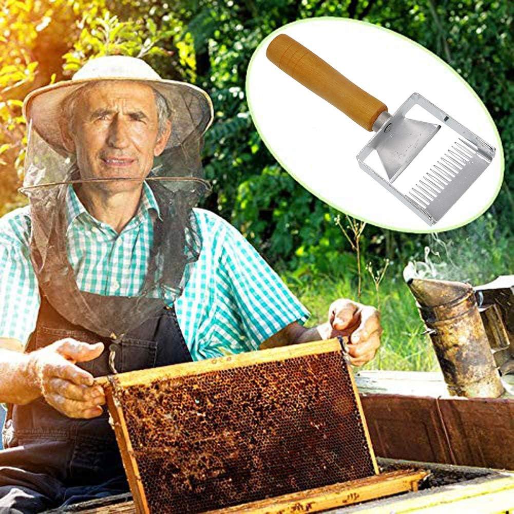 VRockefeller Grattoir /à Pelle /à Miel Fourche /à racler en Acier Inoxydable Outil apicole Professionnel