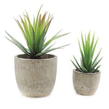 Velener Mini Home Decoration Artificial Plants Aloe With Pots Green Set Of 2
