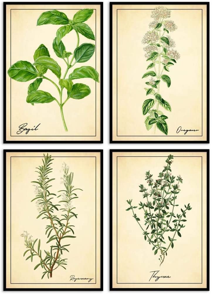 UpCrafts Studio Design - Farmhouse Kitchen Decor - Spice Poster Set - Italian Kitchen Herbs Wall Art Decor (8.3x11.7 inches (A4 Size))