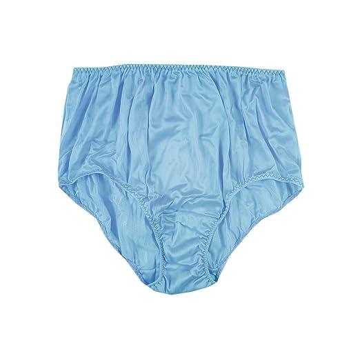 wholesale online size 7 beautiful in colour BBE02 Blue Panties Briefs Sheer Nylon Underwear for Women ...