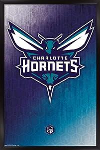 Trends International NBA Charlotte Hornets - Logo 14 Wall Poster, 22.375
