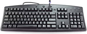 Genuine Dell Programmable MultiMedia PS/2 Black PC Computer Keyboard For Desktop and Notebook Systems Part Numbers: 25PGG, 9C487 Model Numbers: SK-8100, RT7D00