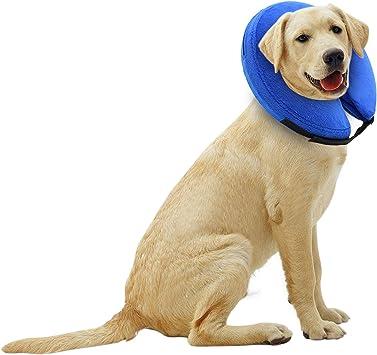 Amazon.com: E-KONG - Collar hinchable para perros y gatos ...