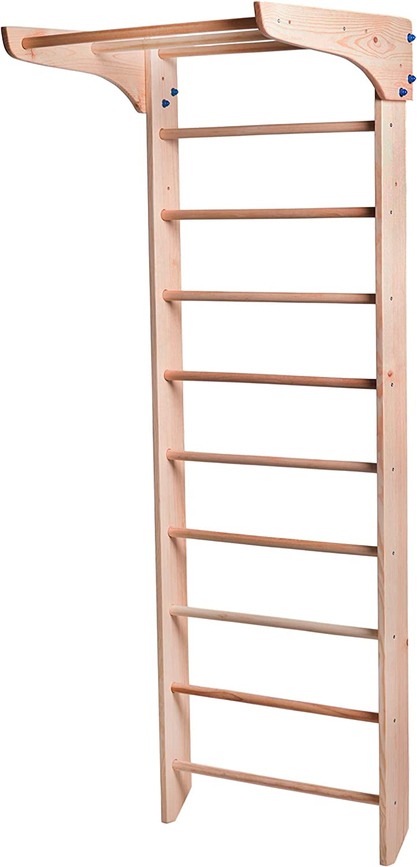 RINAGYM - Escalera Sueca de Pared para niños de 1 a 230 Grados, Gimnasio en casa, Complejo Deportivo para Gimnasia: Amazon.es: Deportes y aire libre