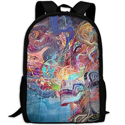 KIENGG Trippy Abstract Skull Unisex Adult Custom Backpack,School Leisure Sports Book Bags,Durable