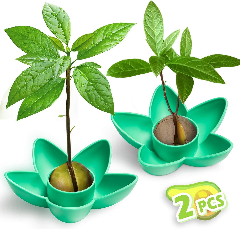 Tazón de 2 piezas de planta de aguacate MOSRACY, regalo de jardín para mamá, hermana y amiga, regalo para principiantes de semillas de vegetales, regalo de cumpleaños de novia (sin semillas)