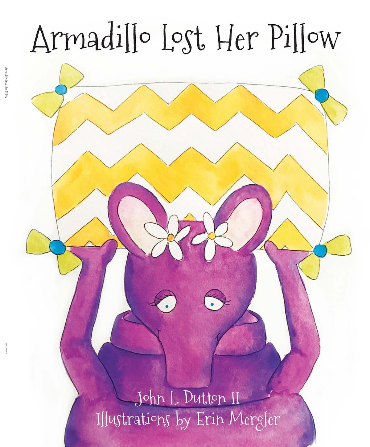 Armadillo Lost Her Pillow ebook
