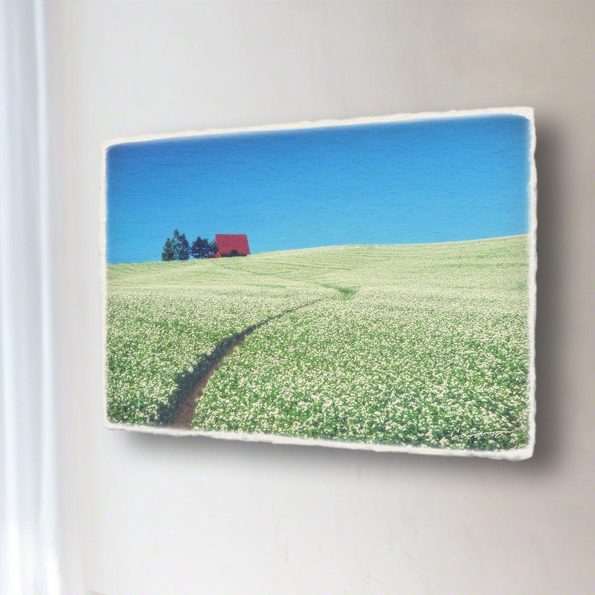 和紙 アートパネル 「一面のソバの花畑と赤い屋根の家へと続く道」 (36x24cm) 絵 絵画 壁掛け 壁飾り インテリア アート B072VWJ6VN 13.アートパネル(長辺36cm) 8800円|一面のソバの花畑と赤い屋根の家へと続く道 一面のソバの花畑と赤い屋根の家へと続く道 13.アートパネル(長辺36cm) 8800円