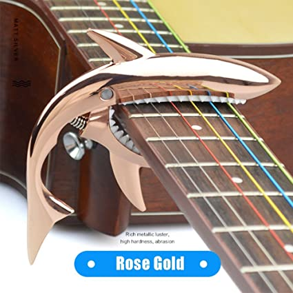 FuLanDe - Cejilla para guitarra eléctrica y acústica (ajuste de ...