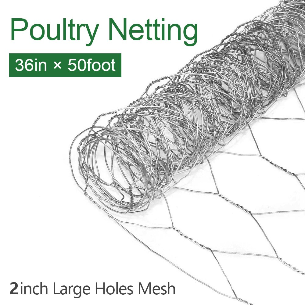 Amazon.com : 2 inch Hexagonal Poultry Netting Galvanized Chicken ...