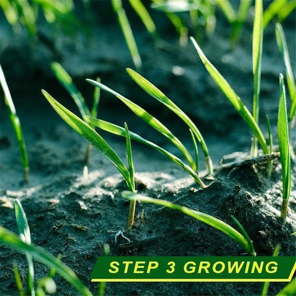 Dan/&Dre Coperta Ecologica da Giardino Tappetino per Semi di Erba Fertilizzante biodegradabile Tappetino per Erba da Giardino Tappetino per Piante da Giardino per Giardino nel Cortile allaperto