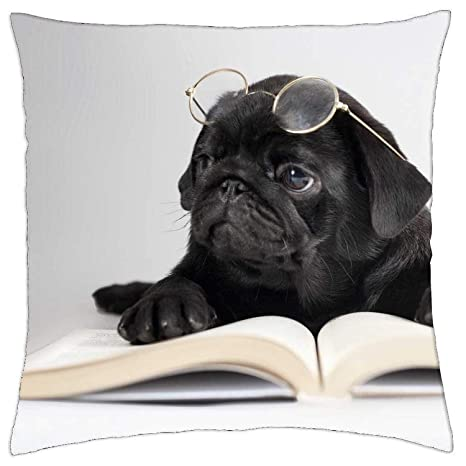 LULABE Reading Pug - Throw Pillow Cover Case for Couch Sofa ...