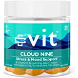 Vit Anxiety and Stress Relief Supplement - Ashwagandha w/Vitamin B12 for Mood Support and Herbal Adaptogens for Calm - Cloud