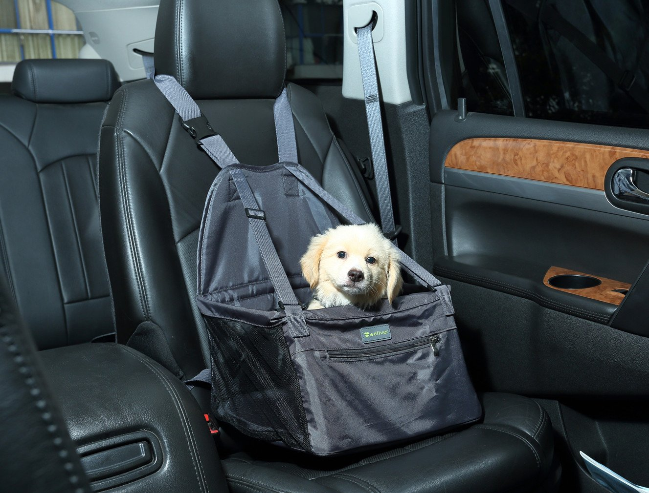 Wellver Pet Dog Car Booster Seat