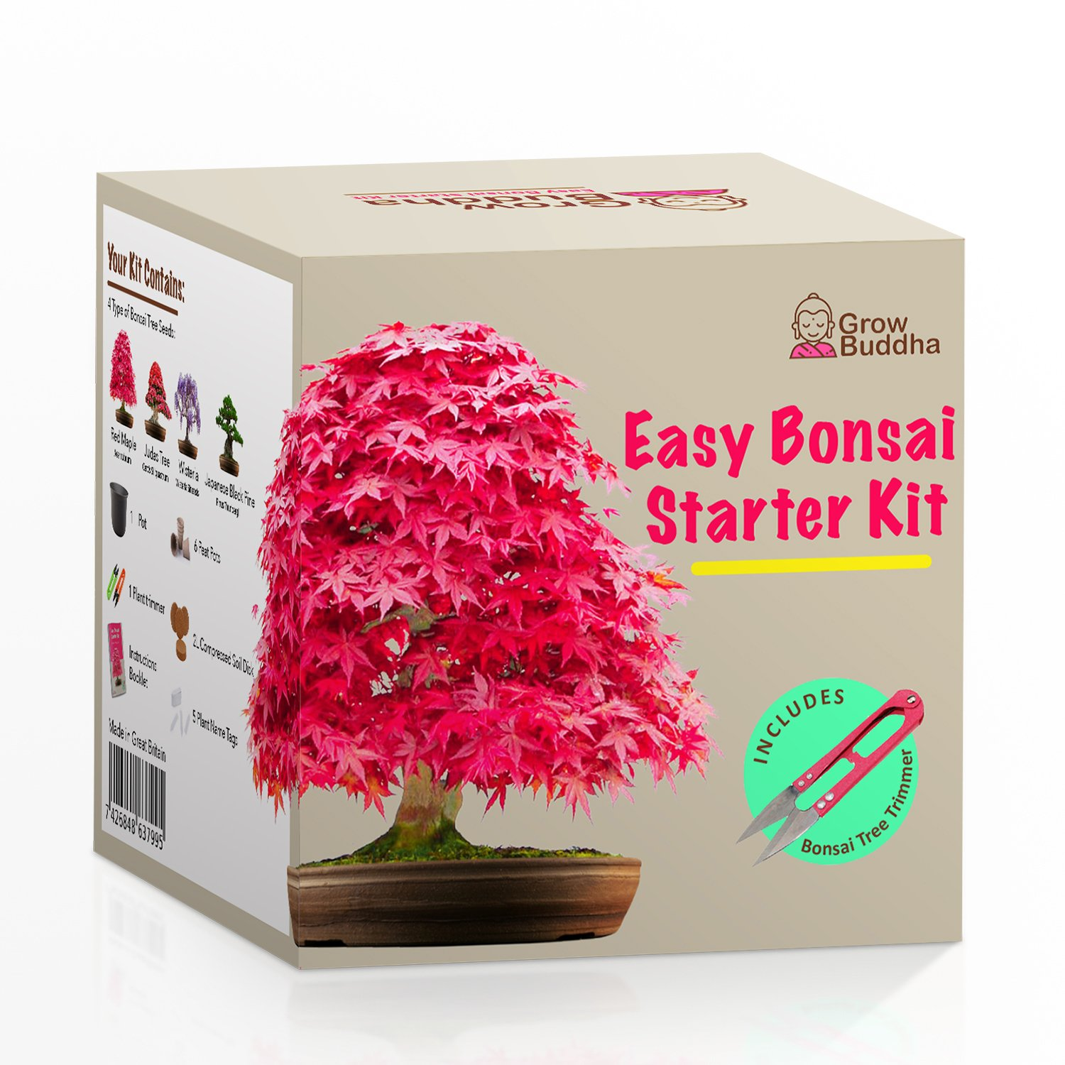 Grow Your own Bonsai kit – Easily Grow 4 Types of Bonsai Trees with Our Complete Beginner Friendly Bonsai Seeds Starter kit – Unique Seed kit Gift idea Grow Buddha