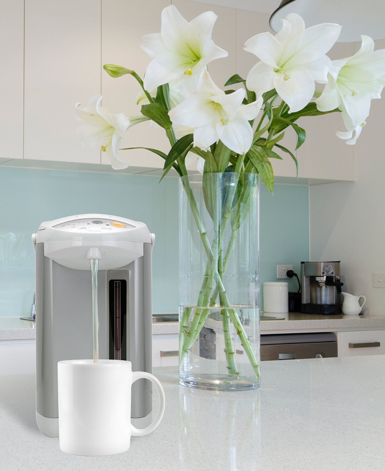Amazon.com: Rosewill R-HAP-01 Electric 4 L Hot Water Dispenser with ...