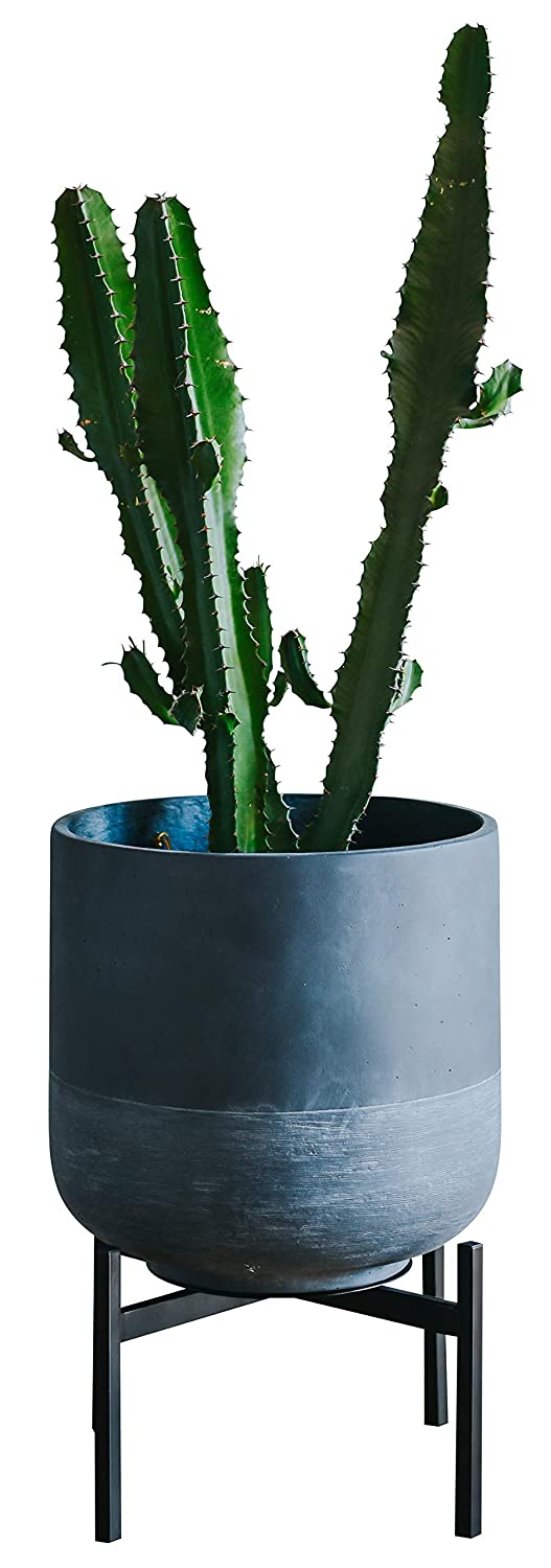Plant Stand for Indoor & Outdoor Pots - Black, Metal Potted Plant Holder for House, Garden & Patio - Sturdy, Galvanized Steel Pot Stand - Stylish Mid-Century Patented Design - Low, By Thorne & Co.
