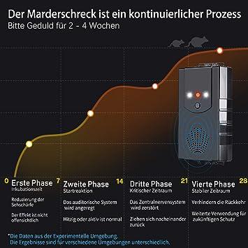 Marderfrei Ultraschall 12 kHz Frequenz mit LED Blitzlichtfunktion Marderschutz Marderabwehr f/ür Garage Motorraum Anschluss an 12V Autobatterie Miavogo 2 St/ück Marderschreck f/ür Auto