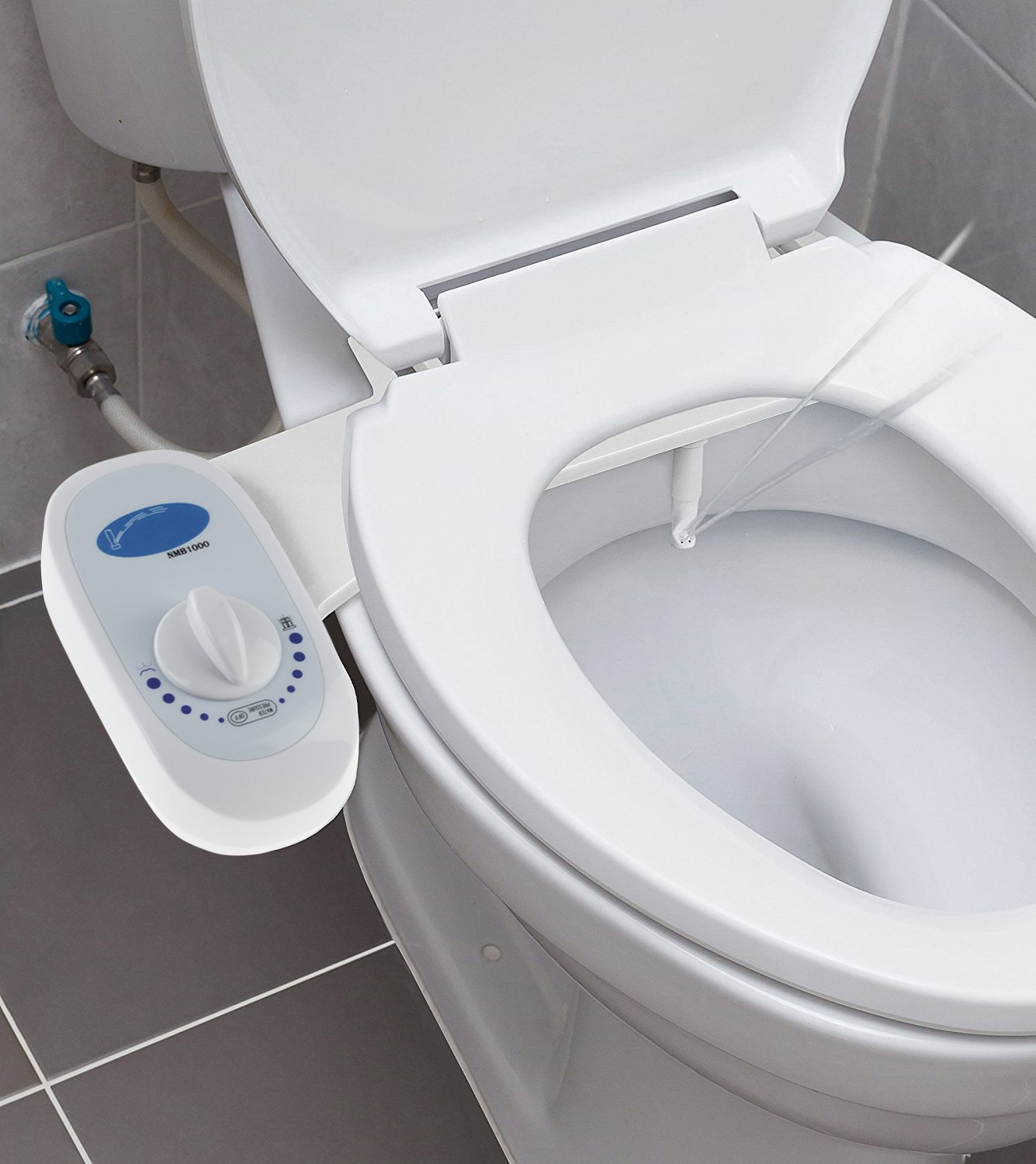life the accessories bidet easier toilet in making disabled bathroom
