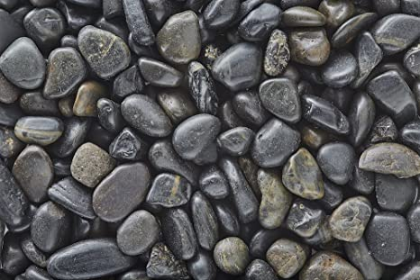Amazon com : One Stop Outdoor Black Polished Pebbles/Gravel (5lbs