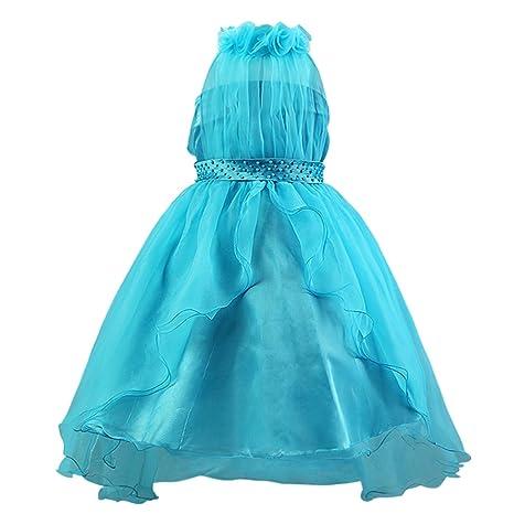 Katara niña de las flores, vestido de noche con velo para niños de 3-4 años, color azul: Amazon.es: Juguetes y juegos