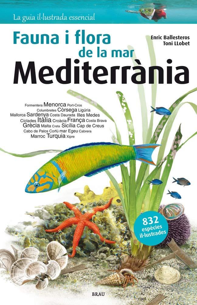 Flora i fauna de la mar Mediterrània: Amazon.es: Enric ...