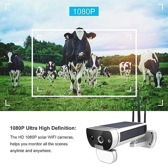 1080P Solar IP Cámara, Cámara de Red, Cámara de Seguridad con ...
