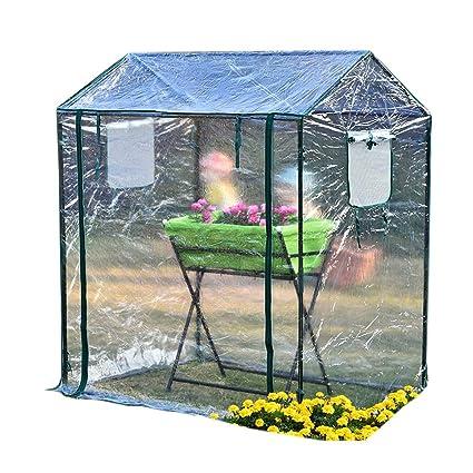 Super Amazon Com Zaq Small Greenhouse Mini Garden Green House Interior Design Ideas Philsoteloinfo
