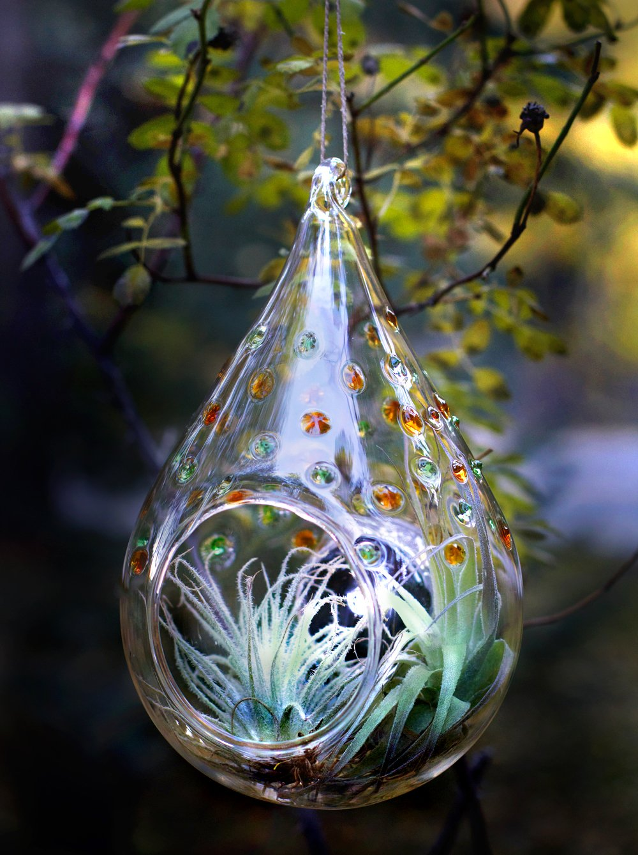 Amazon.com : Allsop Home And Garden Handblown Glass LED Solar Terrarium,  Weather Resistant Solar Panel, Includes Jute Twine, For Small Plants,  Cacti, Garden ...
