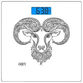 Escala digital de peso corporal de precisión Square Aries del ...