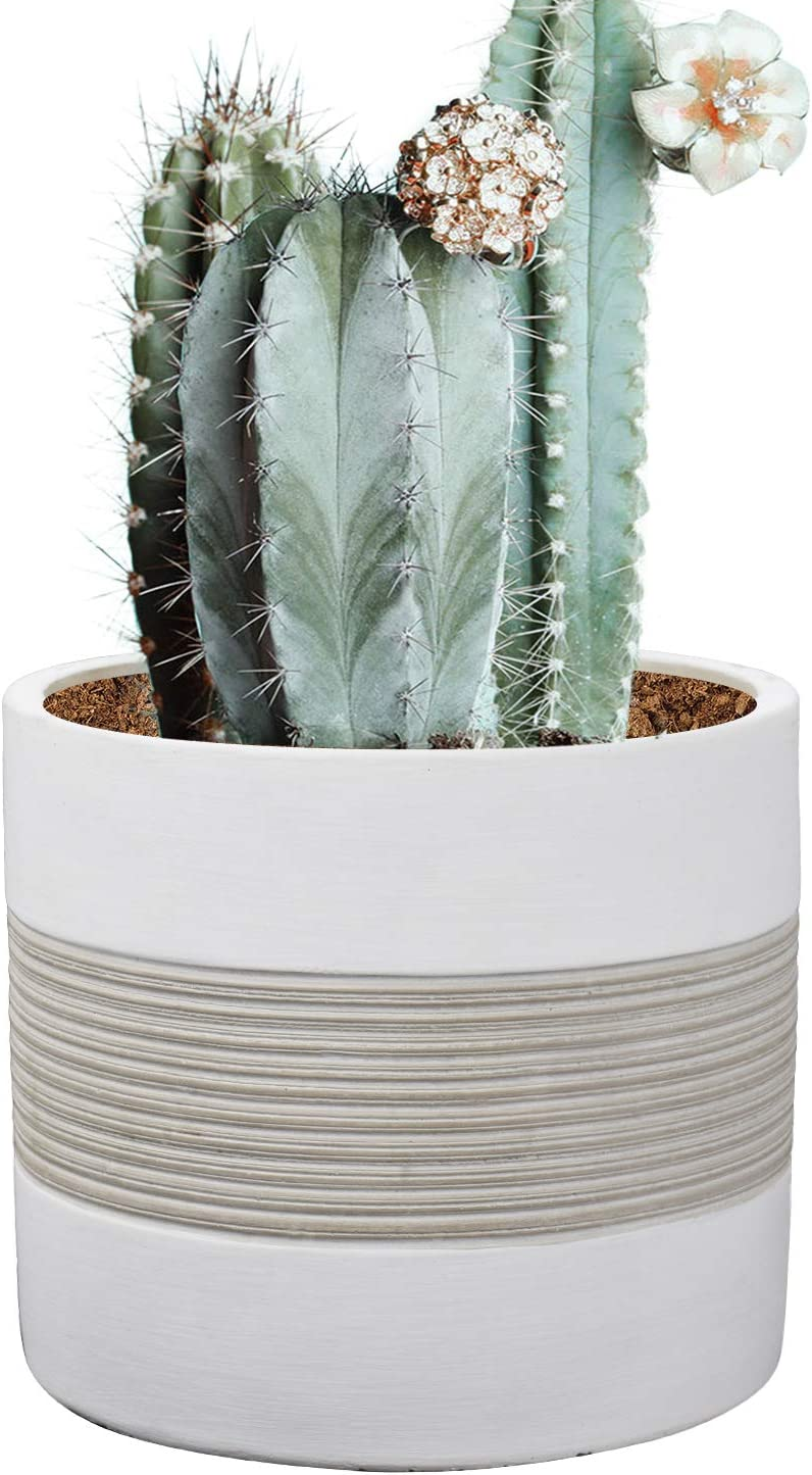 Brief Succulent Pots, 5 inch Diameter, 1 Pack Modern Cement Cactus Flower Aloe Snake Plant Planter Container with Drainage Hole, White P002