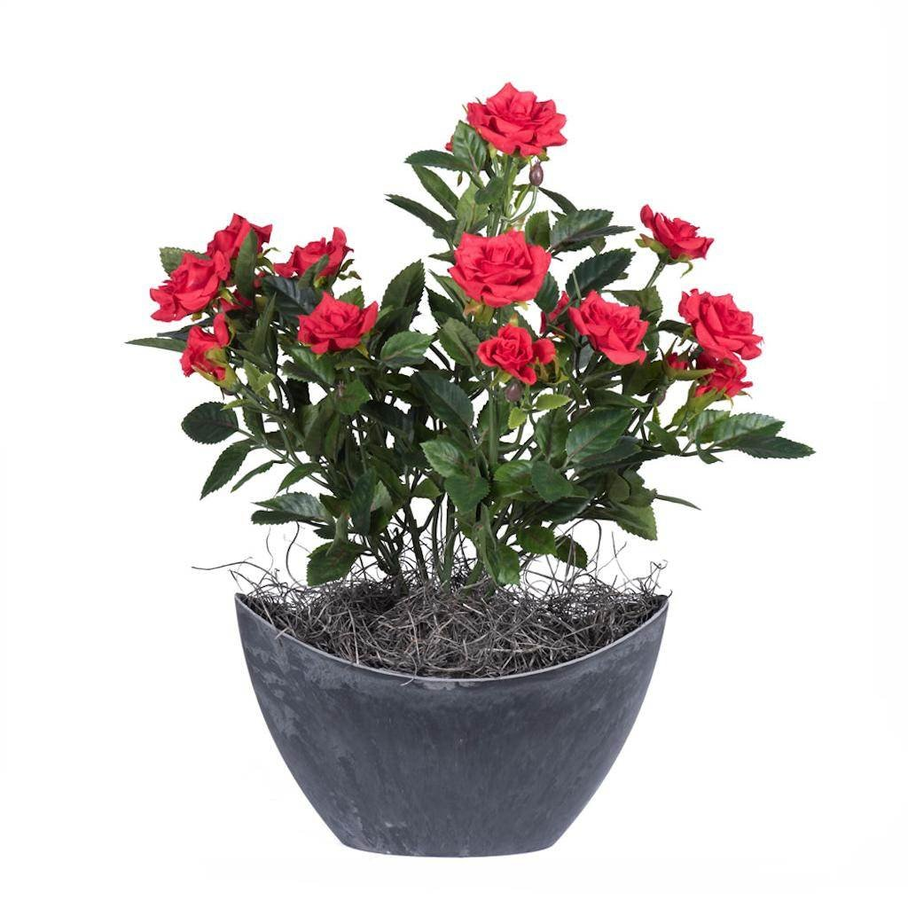 Vickerman F12231 Red Rose Everyday Floral