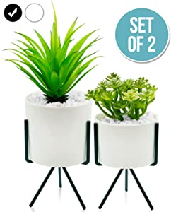 Modern and Realistic Looking Fake Potted Plants – Comes with Chic Ceramic Pots and Metal Stands – 2 Tabletop Plants That are Perfect for Home, Office – Fake Plants That Promote Wellness, Productivity
