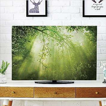 VANKINE - Funda para televisor LCD (Pantalla única, con Cortina ...
