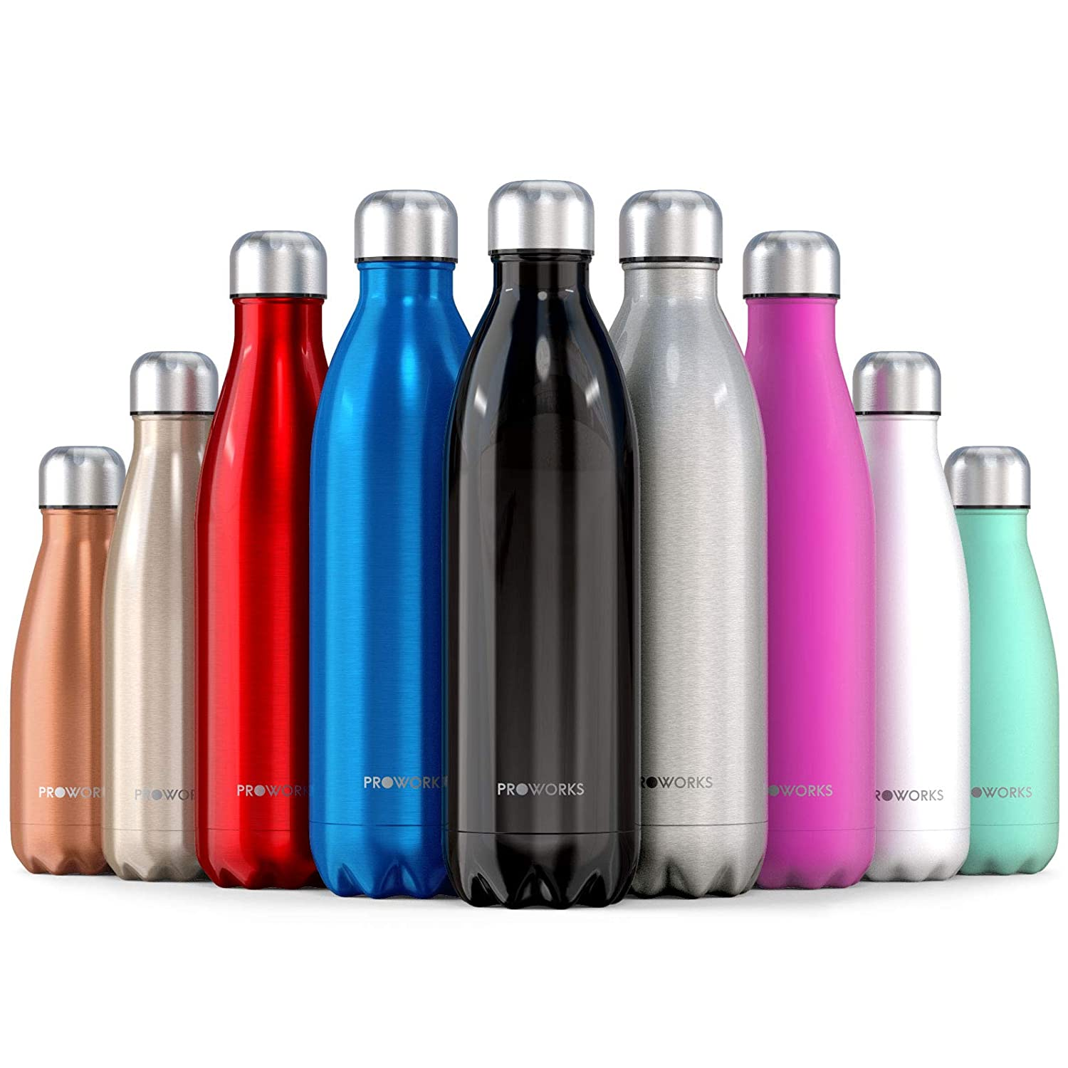 Proworks Stainless Steel Water Bottle, BPA Free Vacuum Insulated Metal  Water Bottle for 12 Hours Hot & 24 Hours Cold Drinks, Sports Flask Great  for