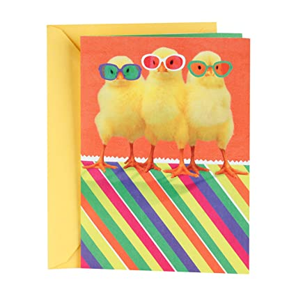 Amazon hallmark funny easter greeting card with song for kids hallmark funny easter greeting card with song for kids plays the chicken dance chicks m4hsunfo Images