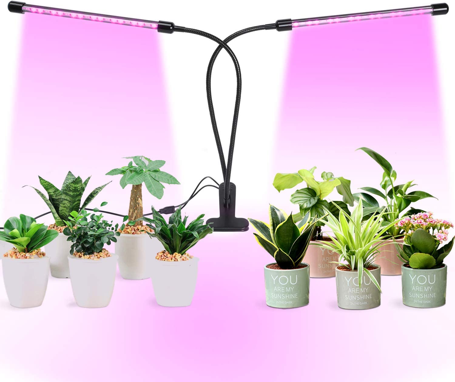 MUCH 40 LED Grow Light, Cycle Timing 20W Dual Head Grow Light, 5 Dimmable Levels Plant Grow Lights for Indoor Plants with Red Blue Spectrum, Adjustable Gooseneck, 3 Switch Modes