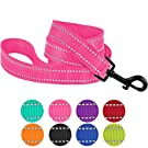 CollarDirect Nylon Dog Leash 5ft for Daily Outdoor Walking Running Training Heavy Duty Reflective Pet Leashes for Large, Medium & Small Dogs