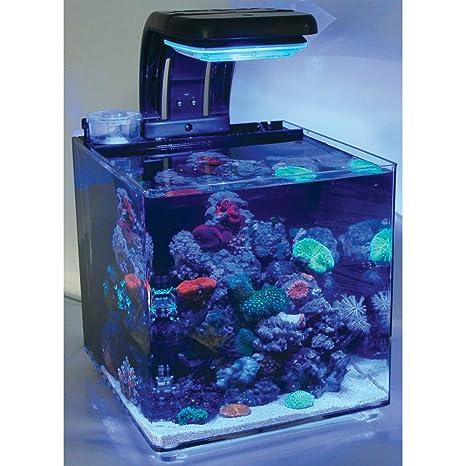 TMC - Micro Hábitat 30 Nano para acuario de agua salada 30 L, completo