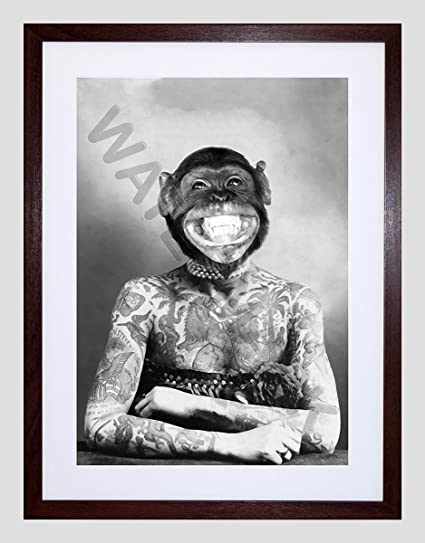 Amazon.com: Wee Blue Coo Monkey Head Tattoo APE Woman Small Framed ...