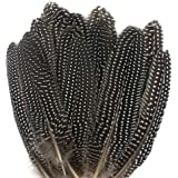 JPSOR 20pcs 6-8 Inches Natural Spotted Feathers for DIY Craft, Jewelry and Clothing Decoration