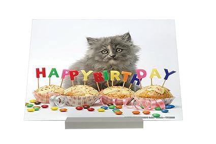 Soporte impresión del arte Fotografias Tarjeta Cumpleaños Gatos Cachorro Feliz cumpleaños Letrero